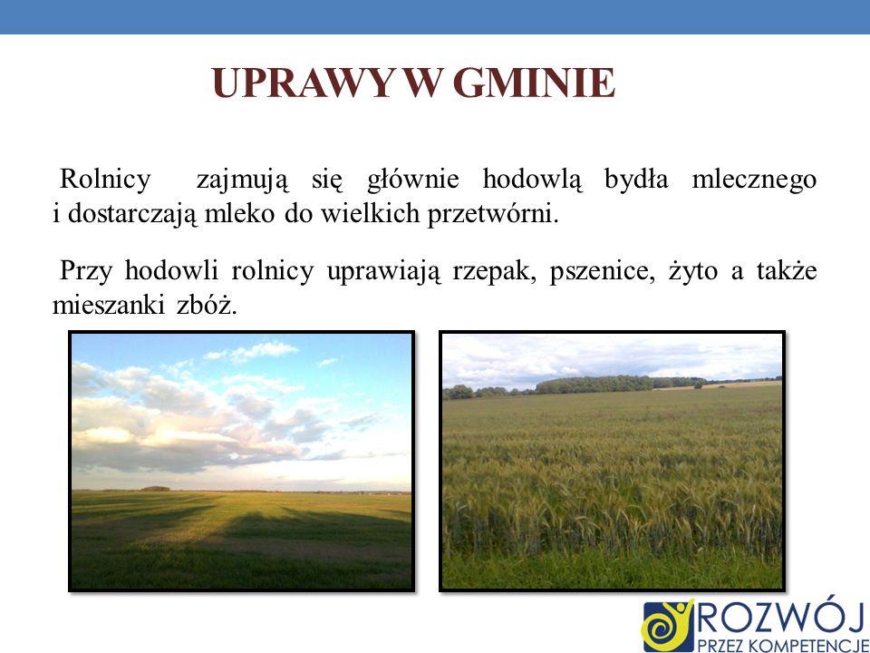 RZEKI I KANAŁY REGIONU Głębokość rzeki Krutynia wynosi przeciętnie 65 cm zaś dno jest porośnięte wodorostami i liliami wodnymi.