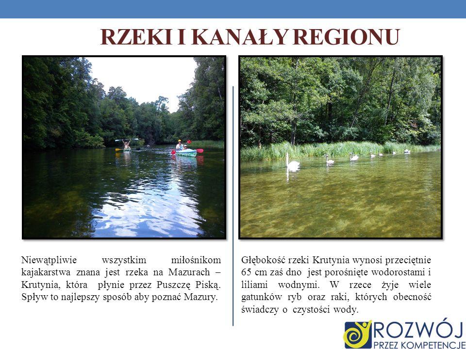 RZEKI I KANAŁY REGIONU Głębokość rzeki Krutynia wynosi przeciętnie 65 cm zaś dno jest porośnięte wodorostami i liliami wodnymi. W rzece żyje wiele gat