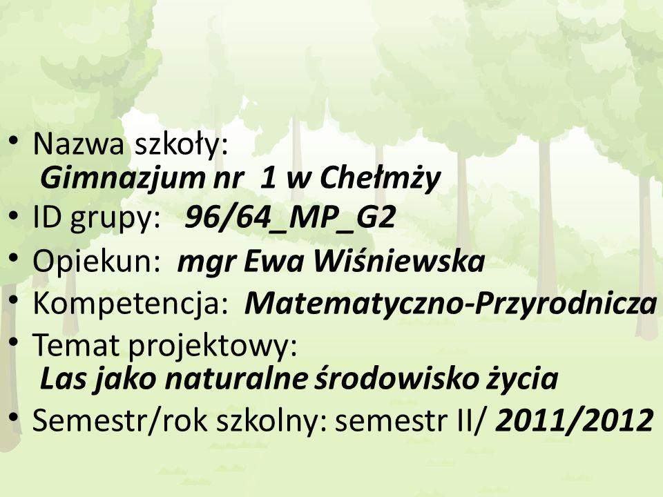Nazwa szkoły: Gimnazjum nr 1 w Chełmży ID grupy: 96/64_MP_G2 Opiekun: mgr Ewa Wiśniewska Kompetencja: Matematyczno-Przyrodnicza Temat projektowy: Las