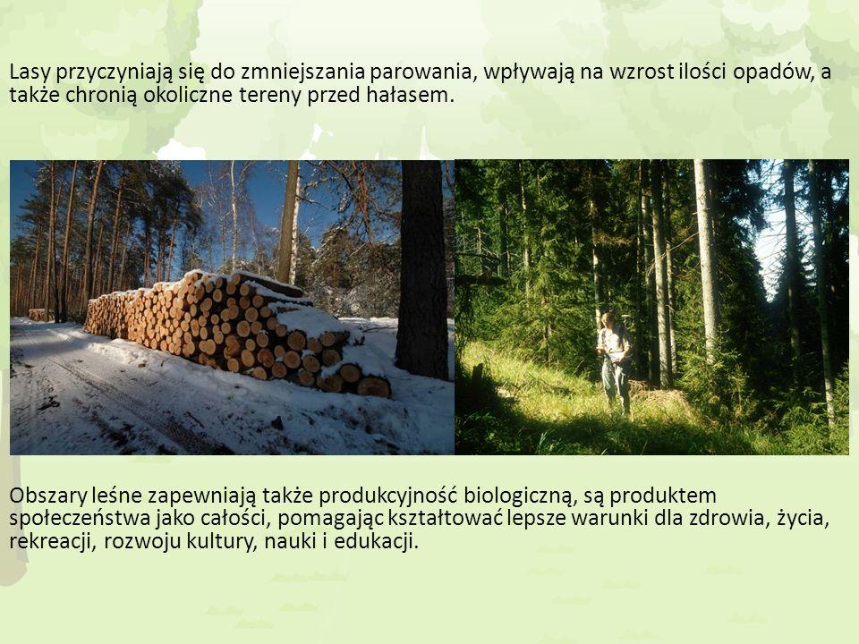 Podstawowe funkcje lasów: a) Produkcyjne- Lasy dostarczają drewna, owoców, ziół, grzybów, żywicy, są siedliskiem życia dzikich zwierząt b) Pozaprodukcyjne- Kształtują i wpływają na warunki środowiska przyrodniczego.