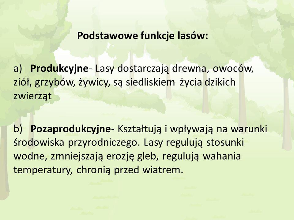 Podstawowe funkcje lasów: a) Produkcyjne- Lasy dostarczają drewna, owoców, ziół, grzybów, żywicy, są siedliskiem życia dzikich zwierząt b) Pozaprodukc