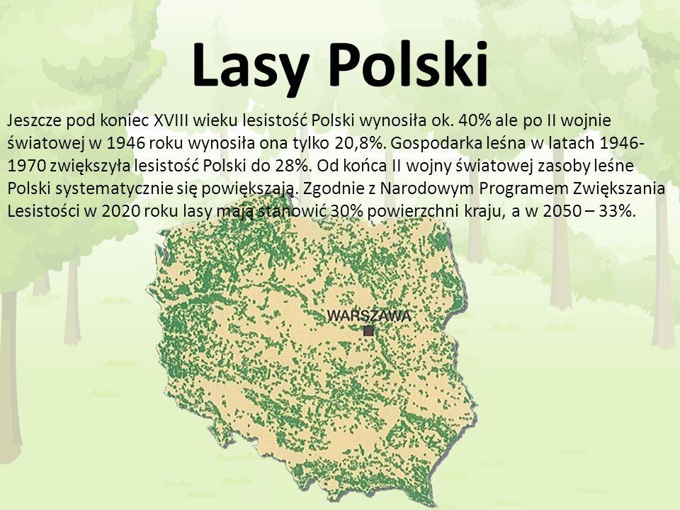 Lasy Polski Jeszcze pod koniec XVIII wieku lesistość Polski wynosiła ok. 40% ale po II wojnie światowej w 1946 roku wynosiła ona tylko 20,8%. Gospodar