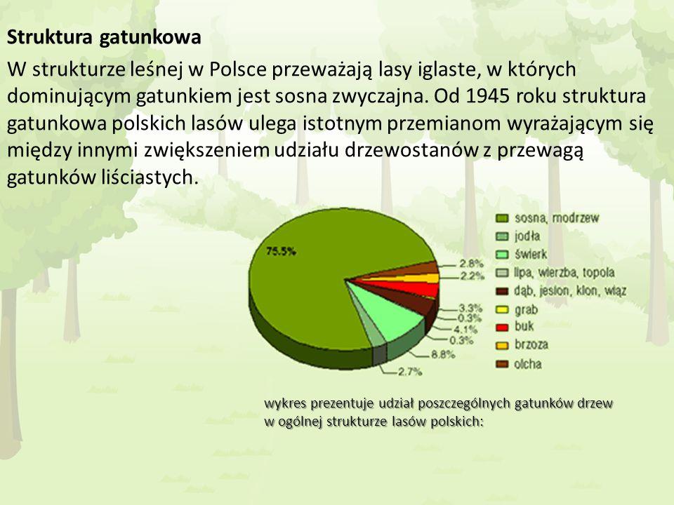 Struktura gatunkowa W strukturze leśnej w Polsce przeważają lasy iglaste, w których dominującym gatunkiem jest sosna zwyczajna. Od 1945 roku struktura