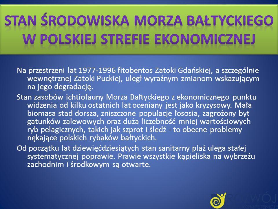 Na przestrzeni lat 1977-1996 fitobentos Zatoki Gdańskiej, a szczególnie wewnętrznej Zatoki Puckiej, uległ wyraźnym zmianom wskazującym na jego degrada