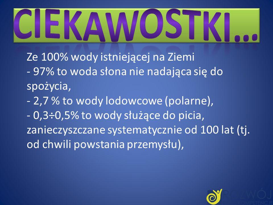 W przekroju Krakowa woda w Wiśle charakteryzuje się nadmiernym zanieczyszczeniem w okresie całego roku.