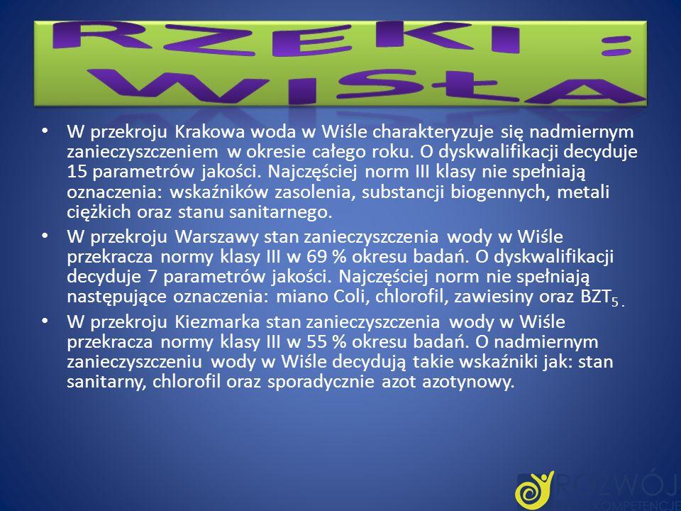 W przekroju Krakowa woda w Wiśle charakteryzuje się nadmiernym zanieczyszczeniem w okresie całego roku. O dyskwalifikacji decyduje 15 parametrów jakoś