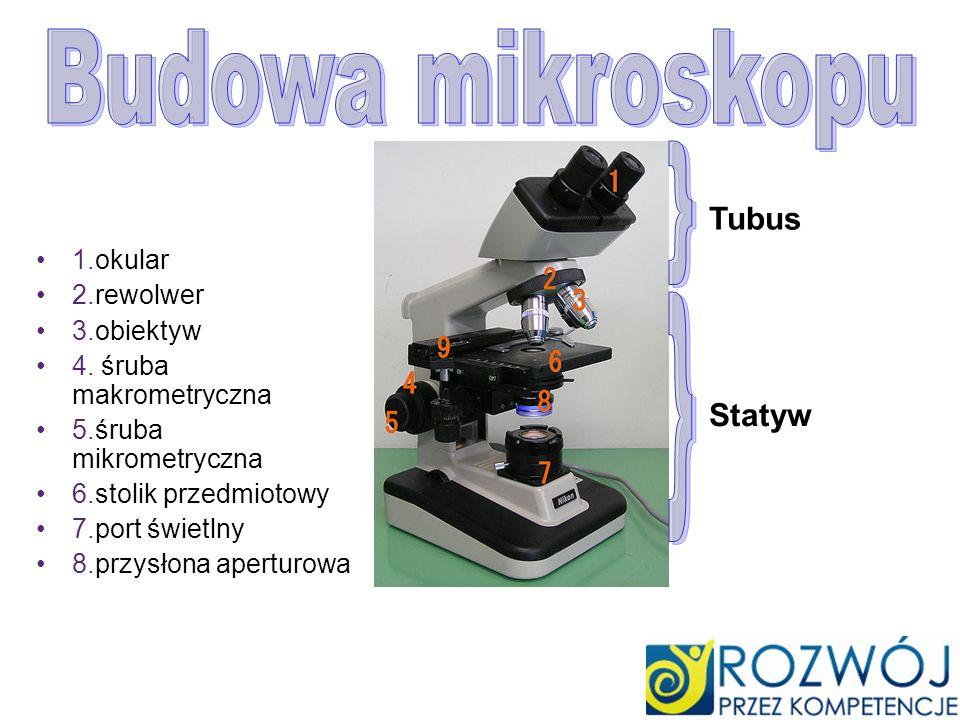 1.okular 2.rewolwer 3.obiektyw 4. śruba makrometryczna 5.śruba mikrometryczna 6.stolik przedmiotowy 7.port świetlny 8.przysłona aperturowa Tubus Staty
