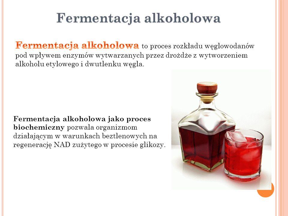 Fermentacja alkoholowa Fermentacja alkoholowa jako proces biochemiczny pozwala organizmom działającym w warunkach beztlenowych na regenerację NAD zuży