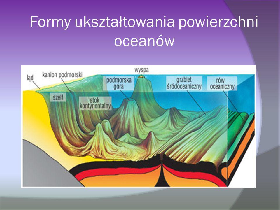 Formy ukształtowania powierzchni oceanów