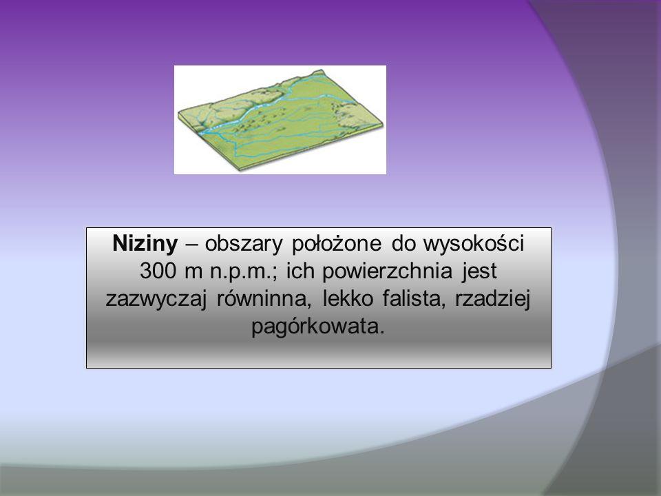 Niziny – obszary położone do wysokości 300 m n.p.m.; ich powierzchnia jest zazwyczaj równinna, lekko falista, rzadziej pagórkowata.