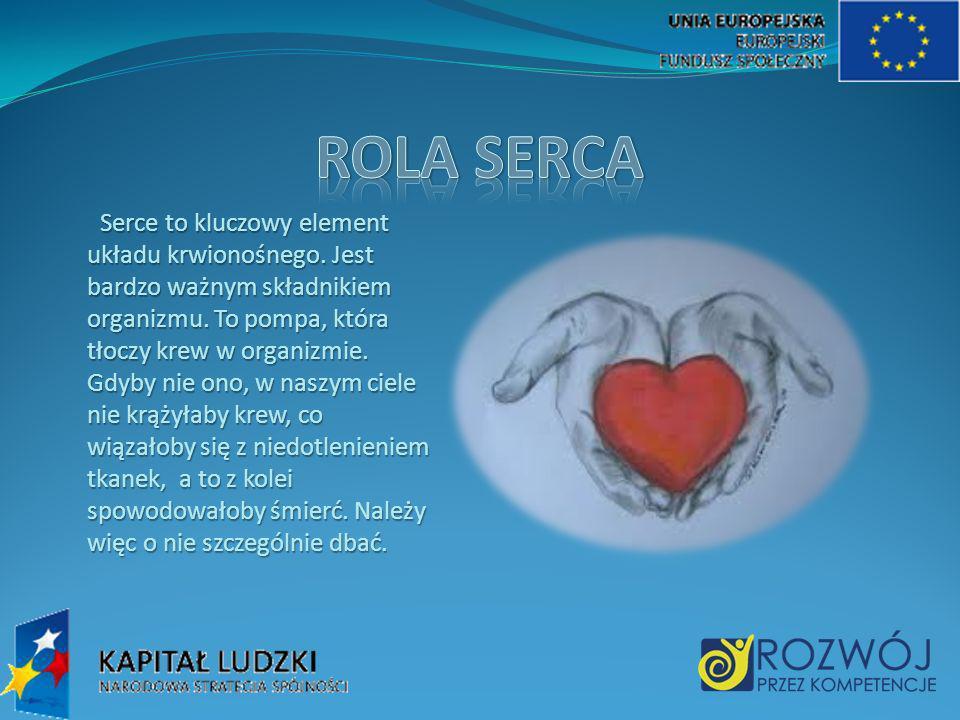 Serce to kluczowy element układu krwionośnego.Jest bardzo ważnym składnikiem organizmu.