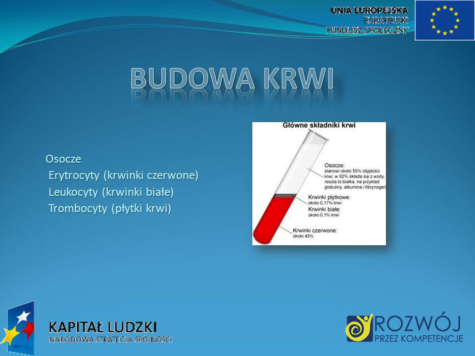 Osocze Osocze Erytrocyty (krwinki czerwone) Erytrocyty (krwinki czerwone) Leukocyty (krwinki białe) Leukocyty (krwinki białe) Trombocyty (płytki krwi)