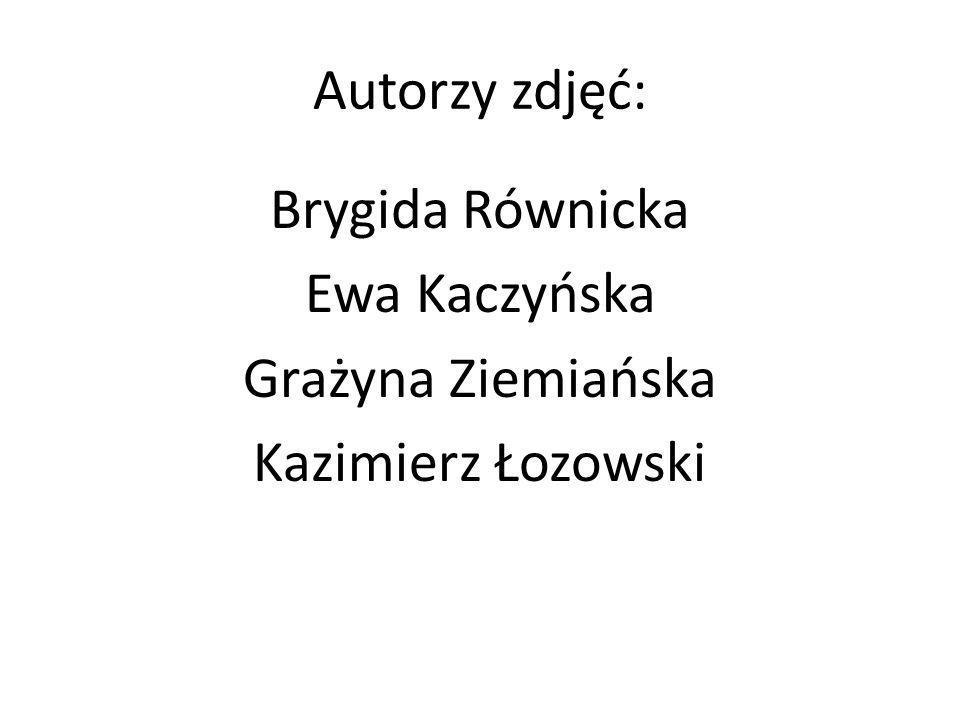 Autorzy zdjęć: Brygida Równicka Ewa Kaczyńska Grażyna Ziemiańska Kazimierz Łozowski