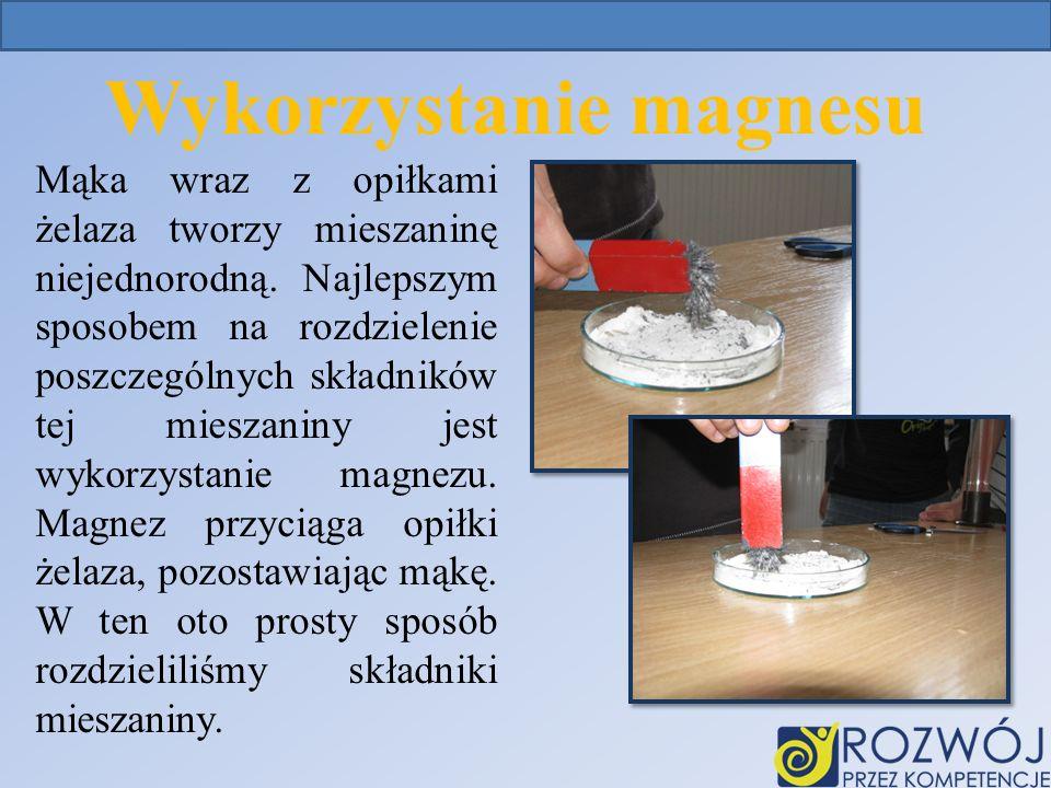 Wykorzystanie magnesu Mąka wraz z opiłkami żelaza tworzy mieszaninę niejednorodną.