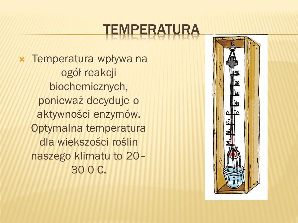 Temperatura wpływa na ogół reakcji biochemicznych, ponieważ decyduje o aktywności enzymów. Optymalna temperatura dla większości roślin naszego klimatu