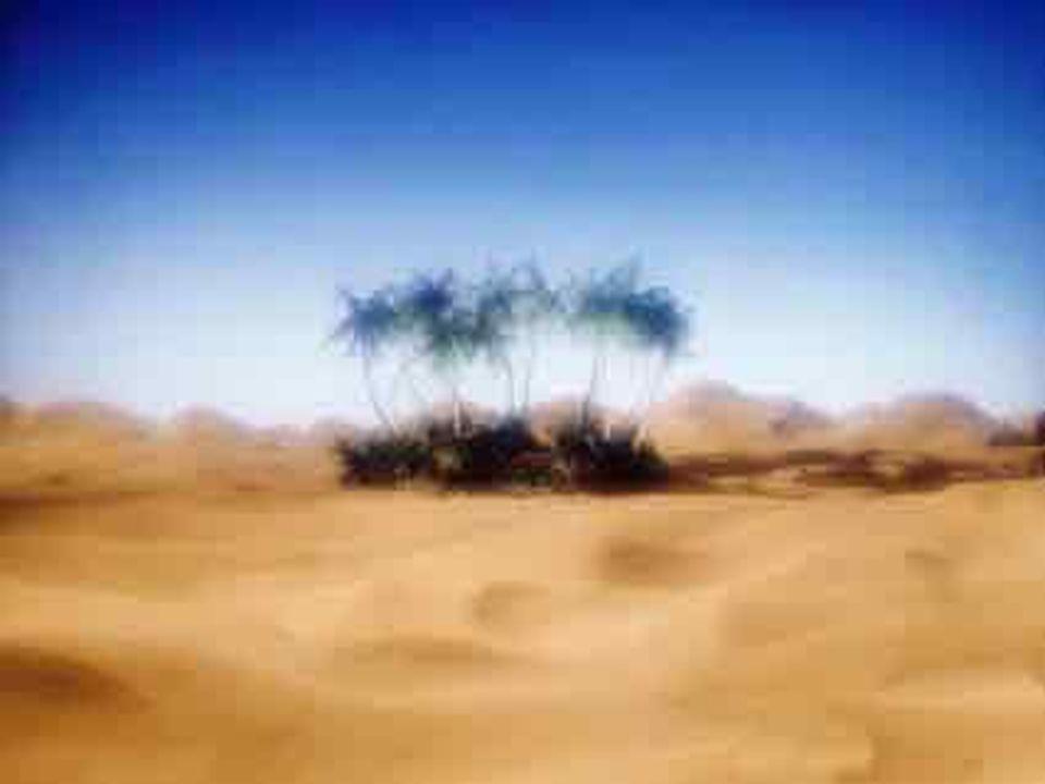 Jak zachodzi to zjawisko ? Podstawą jest różnica temperatur przy powierzchni Ziemi. W dzień piasek na pustyni nagrzewa się bardziej niż powietrze i w