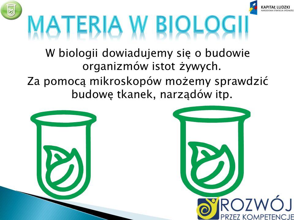 W biologii dowiadujemy się o budowie organizmów istot żywych.