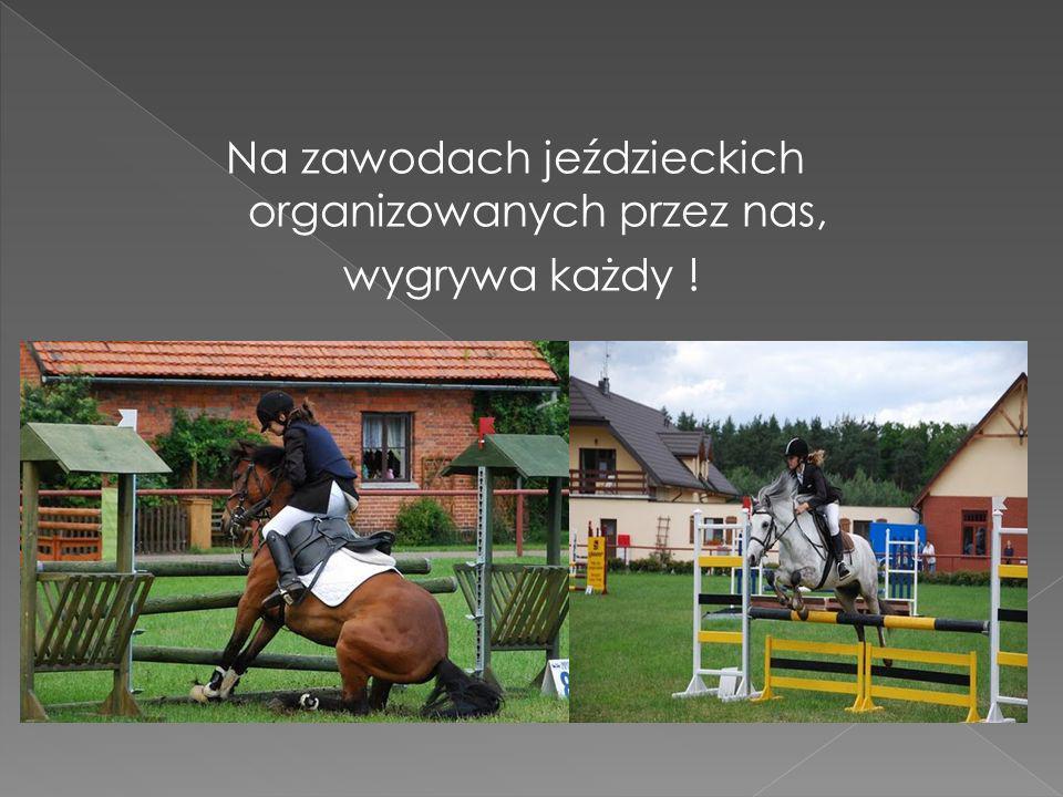 Na zawodach jeździeckich organizowanych przez nas, wygrywa każdy !