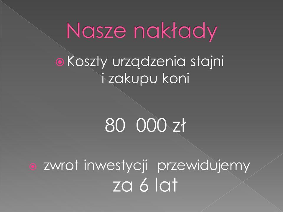Koszty urządzenia stajni i zakupu koni 80 000 zł zwrot inwestycji przewidujemy za 6 lat