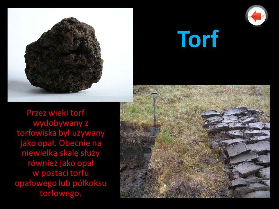 Torf Przez wieki torf wydobywany z torfowiska był używany jako opał. Obecnie na niewielką skalę służy również jako opał w postaci torfu opałowego lub