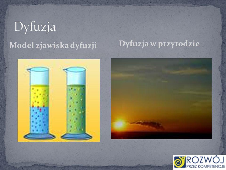 Model zjawiska dyfuzji Dyfuzja w przyrodzie