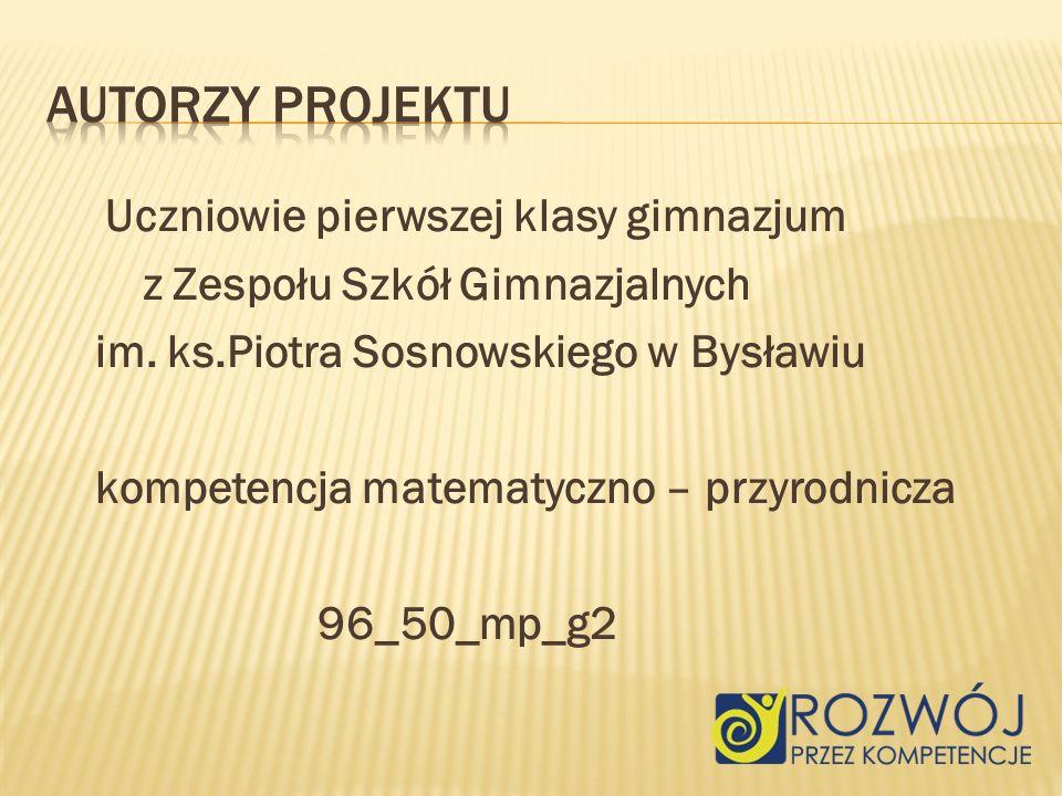 Uczniowie pierwszej klasy gimnazjum z Zespołu Szkół Gimnazjalnych im.