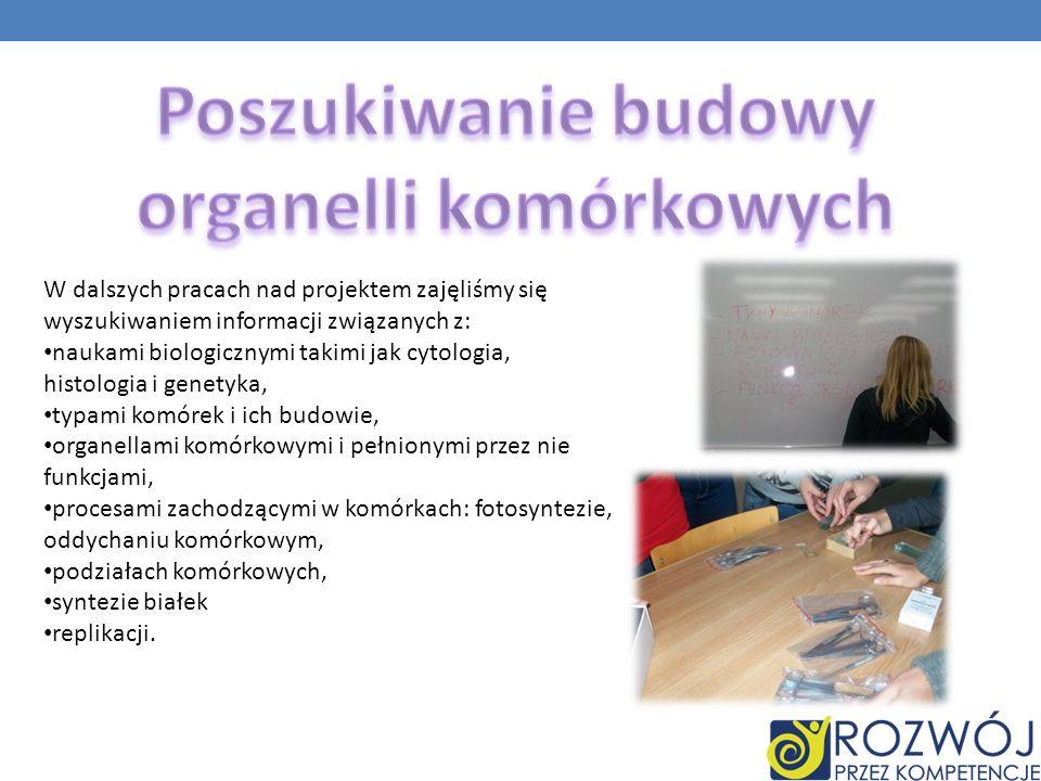 W dalszych pracach nad projektem zajęliśmy się wyszukiwaniem informacji związanych z: naukami biologicznymi takimi jak cytologia, histologia i genetyk