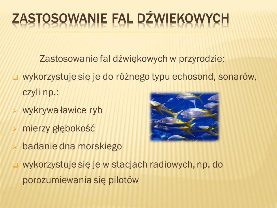 Zastosowanie fal dźwiękowych w przyrodzie: wykorzystuje się je do różnego typu echosond, sonarów, czyli np.: wykrywa ławice ryb mierzy głębokość badan