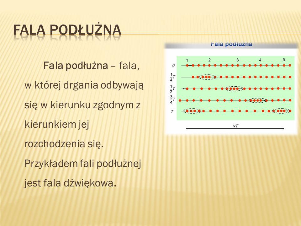 Fala podłużna – fala, w której drgania odbywają się w kierunku zgodnym z kierunkiem jej rozchodzenia się. Przykładem fali podłużnej jest fala dźwiękow