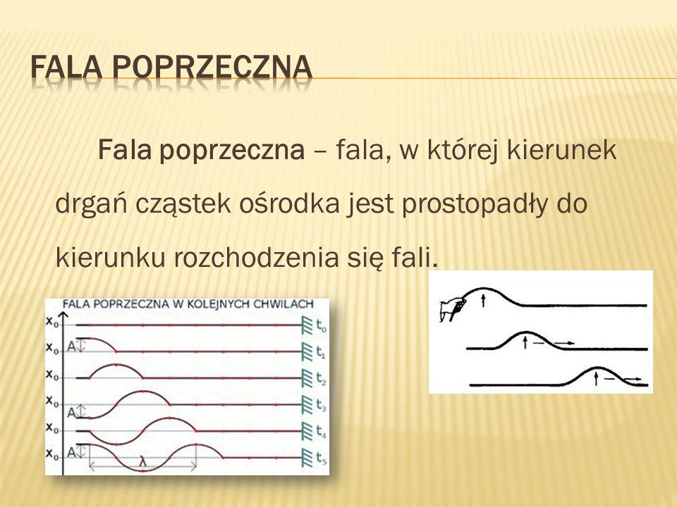 Fala poprzeczna – fala, w której kierunek drgań cząstek ośrodka jest prostopadły do kierunku rozchodzenia się fali.