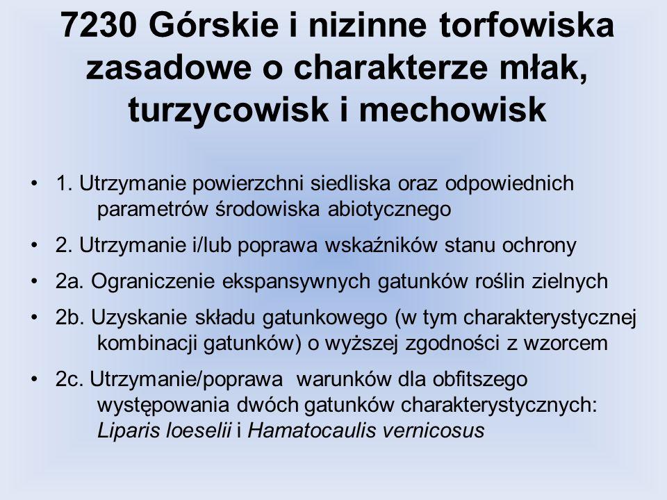 7230 Górskie i nizinne torfowiska zasadowe o charakterze młak, turzycowisk i mechowisk 1. Utrzymanie powierzchni siedliska oraz odpowiednich parametró