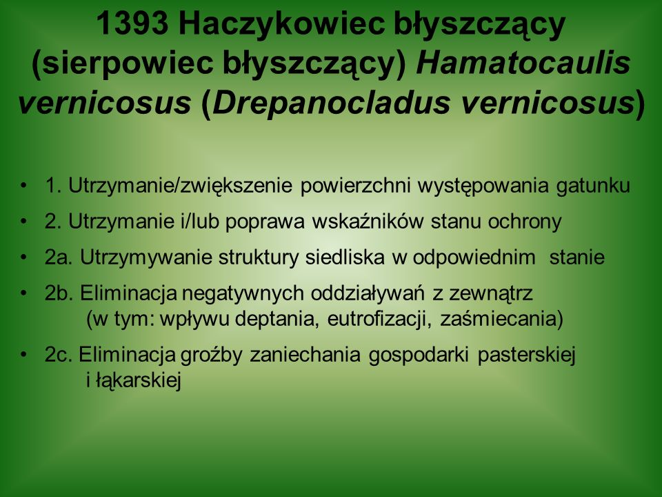 1393 Haczykowiec błyszczący (sierpowiec błyszczący) Hamatocaulis vernicosus (Drepanocladus vernicosus) 1. Utrzymanie/zwiększenie powierzchni występowa