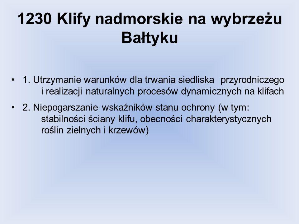 1230 Klify nadmorskie na wybrzeżu Bałtyku 1. Utrzymanie warunków dla trwania siedliska przyrodniczego i realizacji naturalnych procesów dynamicznych n