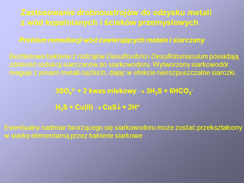 Zastosowanie drobnoustrojów do odzysku metali z wód kopalnianych i ścieków przemysłowych Problem remediacji wód zawierających metale i siarczany Beztlenowe bakterie z rodzajów Desulfovibrio i Desulfotomaculum posiadają zdolność redukcji siarczanów do siarkowodoru.