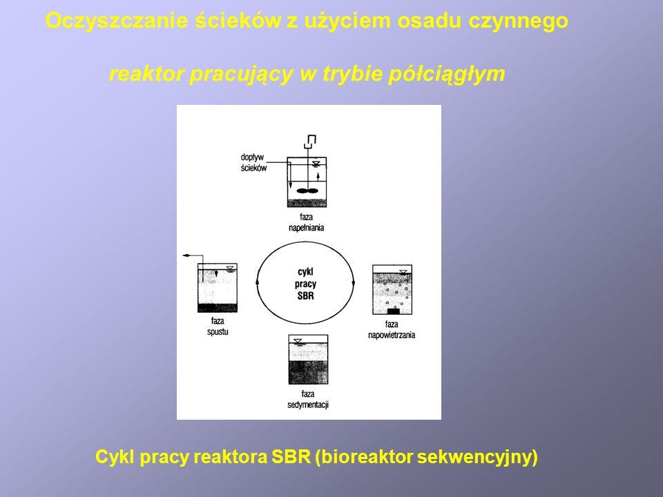 Cykl pracy reaktora SBR (bioreaktor sekwencyjny) Oczyszczanie ścieków z użyciem osadu czynnego reaktor pracujący w trybie półciągłym
