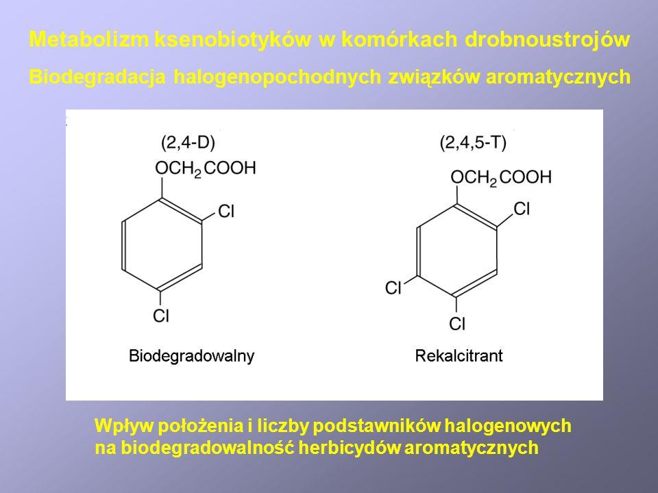 Wpływ położenia i liczby podstawników halogenowych na biodegradowalność herbicydów aromatycznych Biodegradacja halogenopochodnych związków aromatyczny