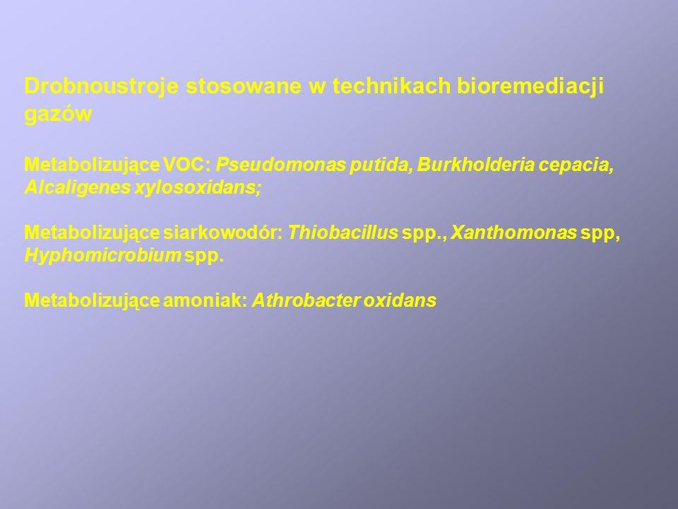 Drobnoustroje stosowane w technikach bioremediacji gazów Metabolizujące VOC: Pseudomonas putida, Burkholderia cepacia, Alcaligenes xylosoxidans; Metab