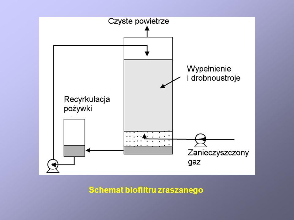 Schemat biofiltru zraszanego