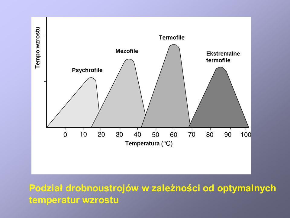 Podział drobnoustrojów w zależności od optymalnych temperatur wzrostu