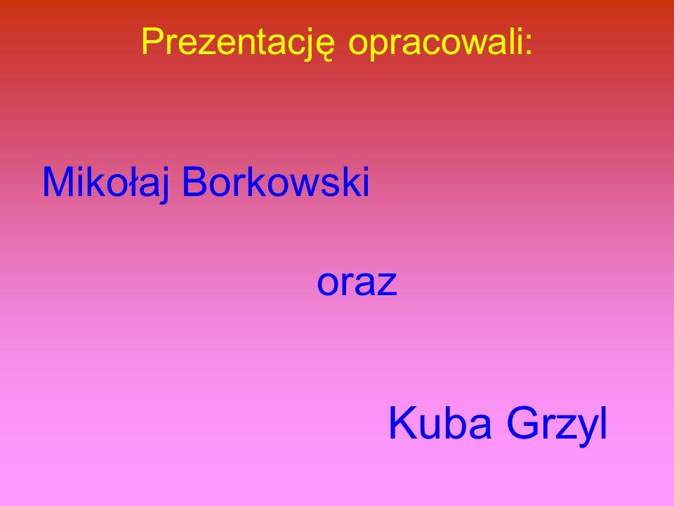Prezentację opracowali: Mikołaj Borkowski oraz Kuba Grzyl