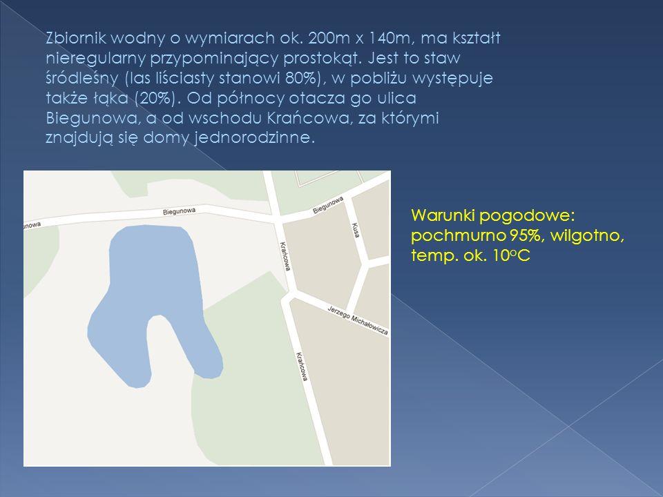 Zbiornik wodny o wymiarach ok. 200m x 140m, ma kształt nieregularny przypominający prostokąt. Jest to staw śródleśny (las liściasty stanowi 80%), w po