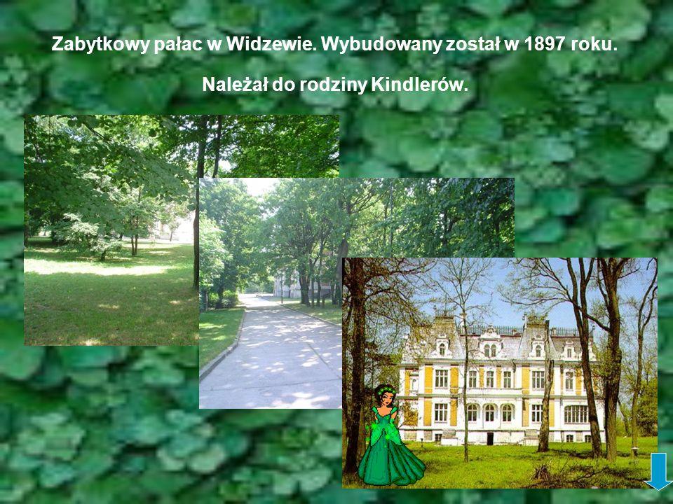 Zabytkowy pałac w Widzewie. Wybudowany został w 1897 roku. Należał do rodziny Kindlerów.