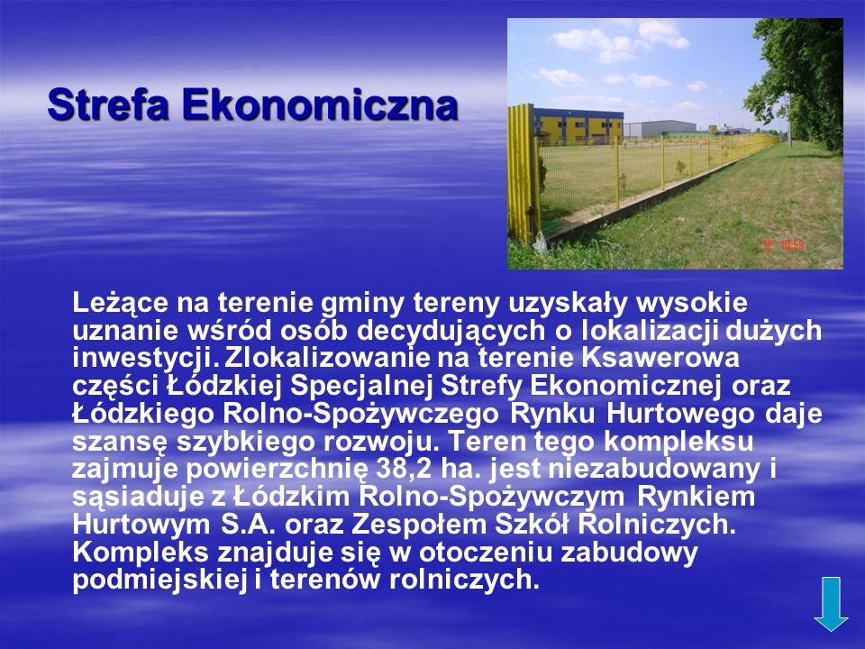 Strefa Ekonomiczna Leżące na terenie gminy tereny uzyskały wysokie uznanie wśród osób decydujących o lokalizacji dużych inwestycji. Zlokalizowanie na
