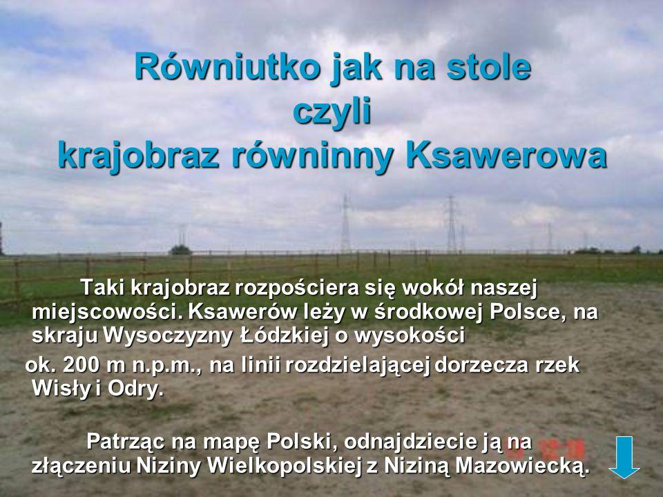 Równiutko jak na stole czyli krajobraz równinny Ksawerowa Taki krajobraz rozpościera się wokół naszej miejscowości. Ksawerów leży w środkowej Polsce,