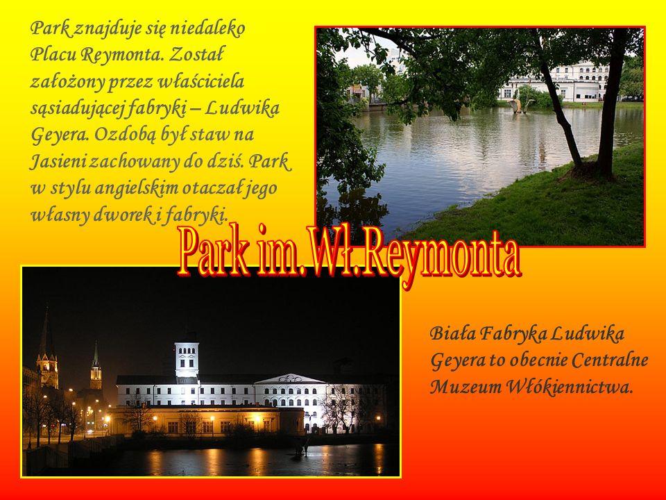 Park znajduje się niedaleko Placu Reymonta. Został założony przez właściciela sąsiadującej fabryki – Ludwika Geyera. Ozdobą był staw na Jasieni zachow