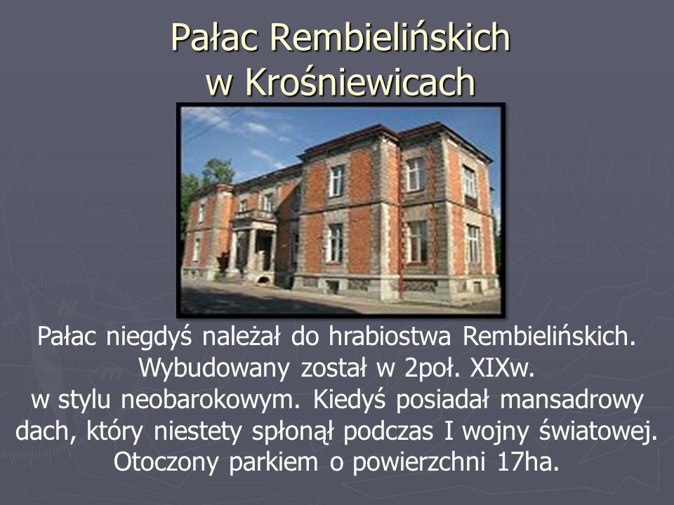 Pałac Rembielińskich w Krośniewicach Pałac niegdyś należał do hrabiostwa Rembielińskich. Wybudowany został w 2poł. XIXw. w stylu neobarokowym. Kiedyś