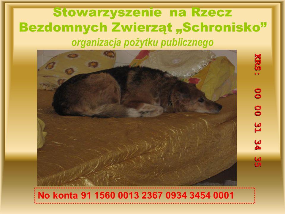 Stowarzyszenie na Rzecz Bezdomnych Zwierząt Schronisko organizacja pożytku publicznego No konta 91 1560 0013 2367 0934 3454 0001 KRS: 00 00 31 34 35