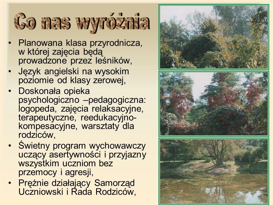 Planowana klasa przyrodnicza, w której zajęcia będą prowadzone przez leśników, Język angielski na wysokim poziomie od klasy zerowej, Doskonała opieka