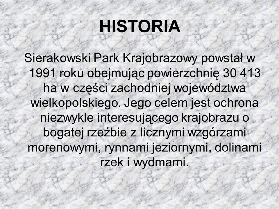 HISTORIA Sierakowski Park Krajobrazowy powstał w 1991 roku obejmując powierzchnię 30 413 ha w części zachodniej województwa wielkopolskiego. Jego cele