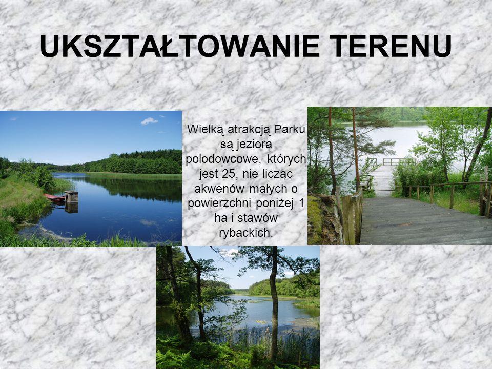 UKSZTAŁTOWANIE TERENU Wielką atrakcją Parku są jeziora polodowcowe, których jest 25, nie licząc akwenów małych o powierzchni poniżej 1 ha i stawów ryb